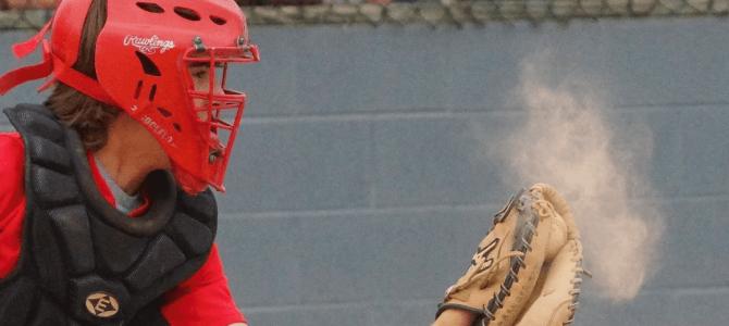 Pine Tar Press Baseball Softball And More